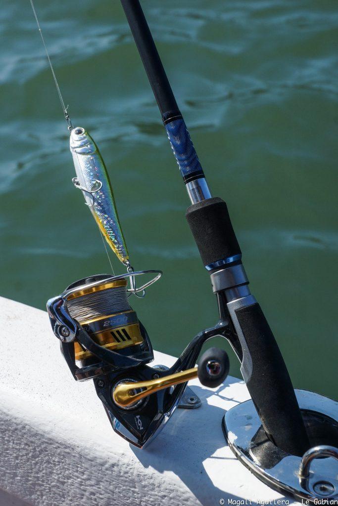 pêche aux leurres canne